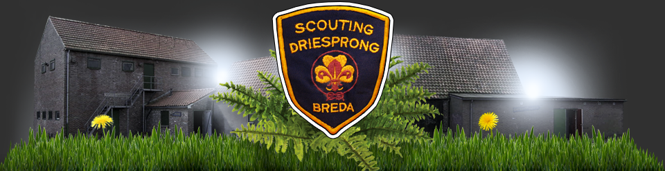 Scouting Driesprong
